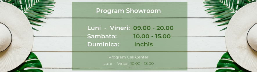 Program de 					lucru showroom